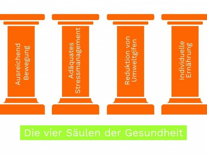 Grafik Die Vier Säulen der Gesundheit | Praxis für Naturheilkunde und Osteopathie Juliane Danziger